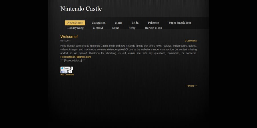 Nintendo Castle Version 1